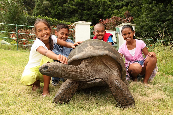 182yo-jonathan-giant-tortoise-oldest-living-land-animal-09